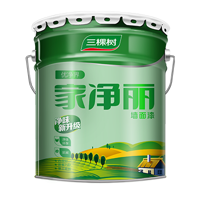 Superior Home Clean Wall Paint